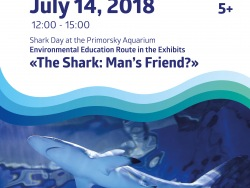 """The Shark: Man's friend"